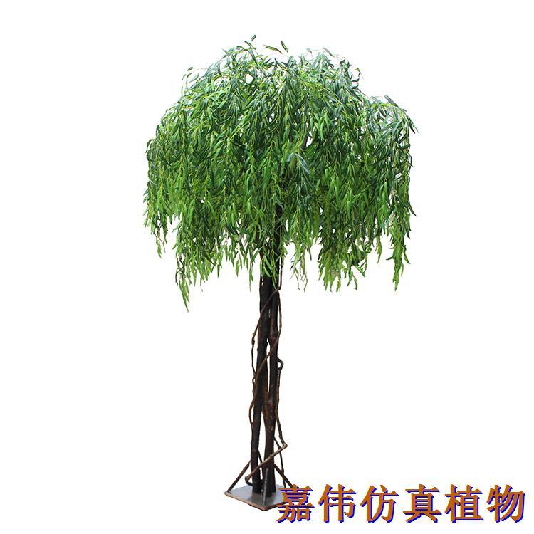2米三杆柳树