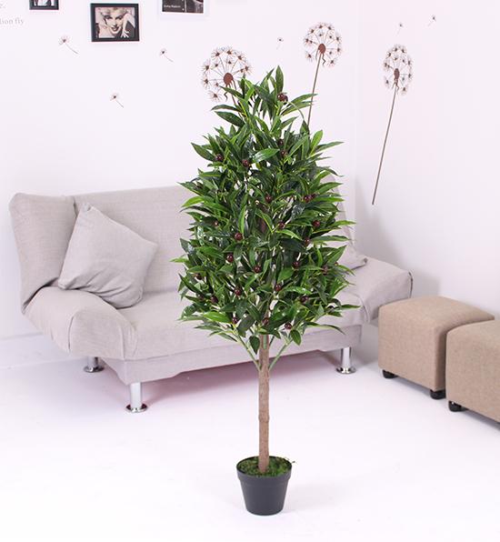 1.2米塔型橄榄