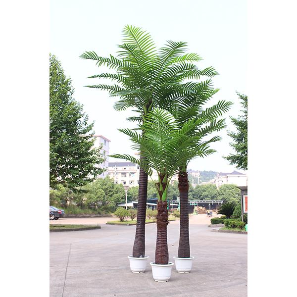A型椰子树组合