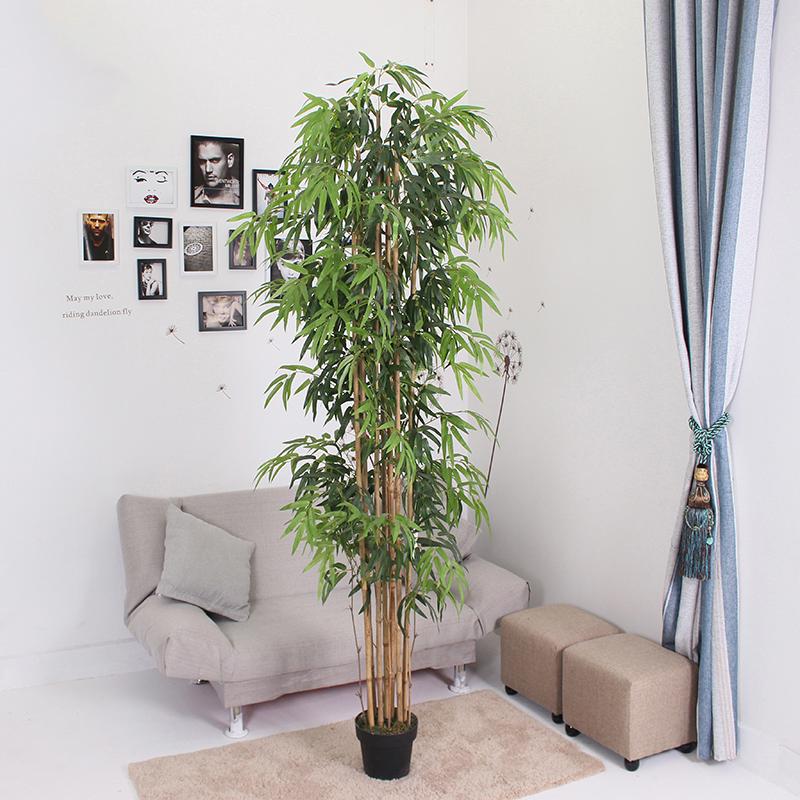 2.13米中号竹