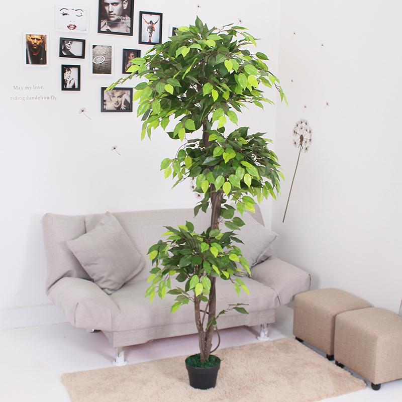 1.8米3头新绿榕